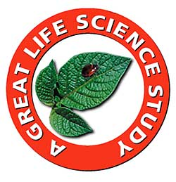 Great Science Adventures Life Science