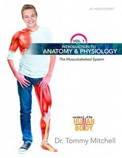 The Musculoskeletal System, Volume 1 of the Wonders of the Human Body Series 9780890518656